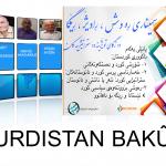 """Paris: """"Mafê çarenûsê dikare pirsa Kurdistanê li Bakur çareser bike"""""""
