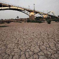 نماینده دزفول: حتی در شرایط عدم صرفه اقتصادی  باید گندم تولید کنیم