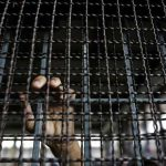 بازداشت و بی اطلاعی از سرنوشت ٢ شهروند کورد در سقز