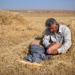 ٣٥ کشته و زخمی بر اثر انفجار مین در کوردستان / گزارش سال ١٣٩٥